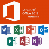 Microsoft Office 2019 Professional - Installed